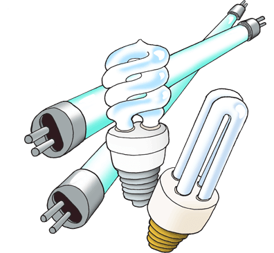 Fluorescent Lamp Disposal